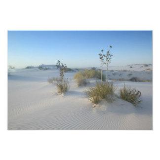 Les Etats-Unis, Nouveau Mexique, ressortissant bla Photos