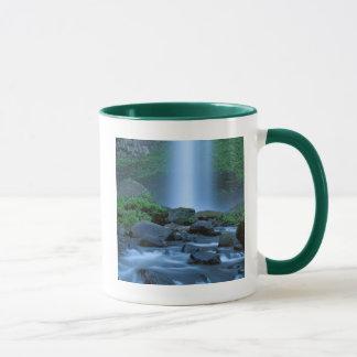 Les Etats-Unis, Orégon, gorge de Colombie, Mug