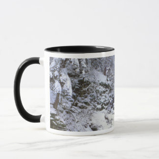 Les Etats-Unis, Orégon, gorge du fleuve Columbia Mug