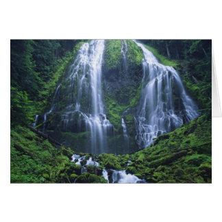 Les Etats-Unis, Orégon, réserve forestière de Carte De Vœux