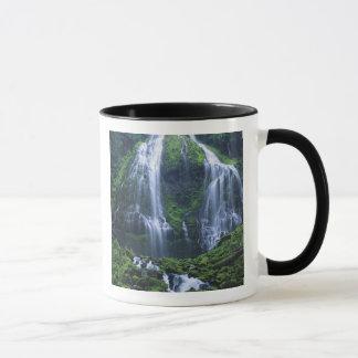 Les Etats-Unis, Orégon, réserve forestière de Mugs