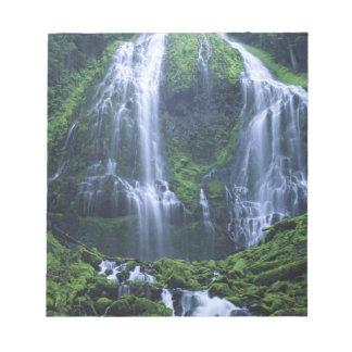 Les Etats-Unis, Orégon, réserve forestière de Will Blocs Notes