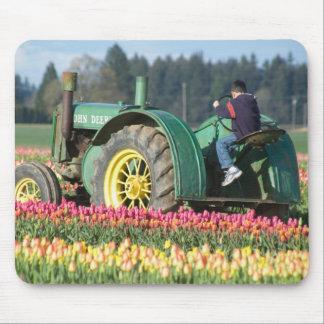 Les Etats-Unis, Orégon, Woodburn, tulipe en bois d Tapis De Souris
