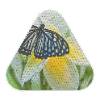 Les Etats-Unis, Pennsylvanie. Papillon de machaon Haut-parleur Bluetooth