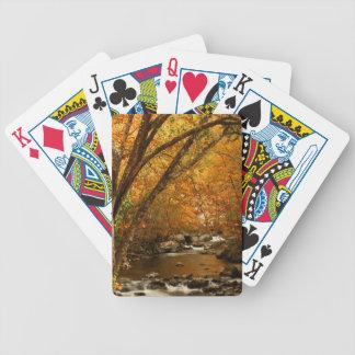 Les Etats-Unis, Tennessee. Crique de précipitation Jeu De Poker