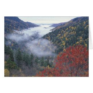 Les Etats-Unis, Tennessee, grandes montagnes de Carte De Vœux