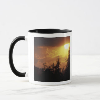 Les Etats-Unis, Tennessee, Great Smoky Mountains Tasse