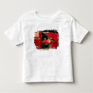 Les Etats-Unis, Tennessee, Memphis, Elvis Presley T-shirt
