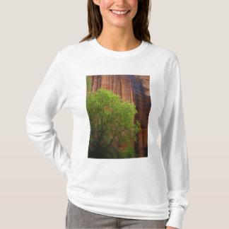 Les Etats-Unis, Utah, falaises de vermillon de T-shirt