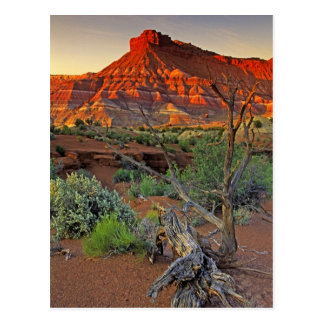Les Etats-Unis, Utah. Formation de grès de canyon Carte Postale