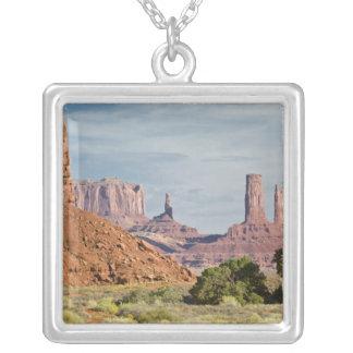 Les Etats-Unis, Utah, parc de tribal de Navajo de Collier