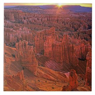 Les Etats-Unis, Utah, parc national de canyon de B Grand Carreau Carré