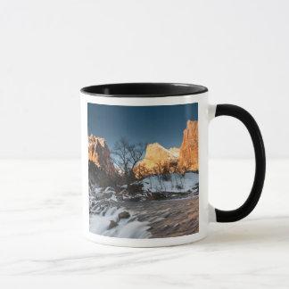 Les Etats-Unis, Utah, parc national de Zion. Lever Mugs