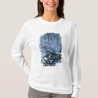 Les Etats-Unis, Utah, réserve forestière de T-shirt