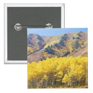 Les Etats-Unis, Utah, réserve forestière de Wasatc Badges