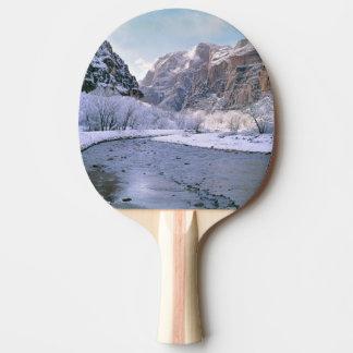 Les Etats-Unis, Utah, Zion NP. Nouveaux Raquette Tennis De Table