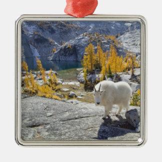 Les Etats-Unis, WA, enchantements alpins de région Ornement Carré Argenté