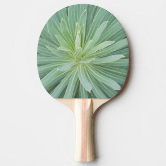 Les Etats-Unis, Washington, Bellevue, Bellevue 4 Raquette De Ping Pong