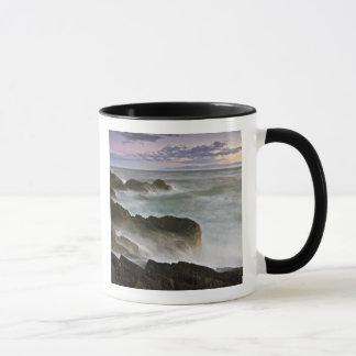Les Etats-Unis, Washington, îles de San Juan.  Mug