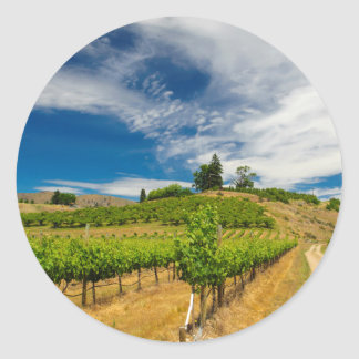 Les Etats-Unis, Washington, lac Chelan. Vignoble 3 Sticker Rond