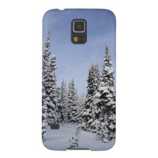 Les Etats-Unis, Washington, neige ont couvert des Coques Galaxy S5