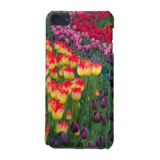 Les Etats-Unis, Washington. Tulipes de floraison 2 Coque iPod Touch 5G