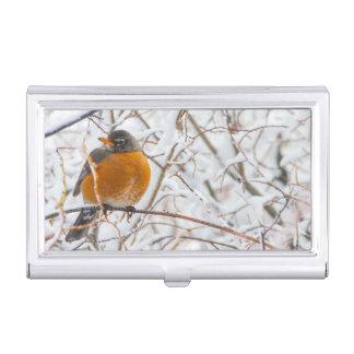 Les Etats-Unis, Wyoming, Américain Robin roosting Étuis Pour Cartes De Visite