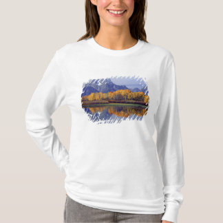 Les Etats-Unis, Wyoming, parc national grand de T-shirt