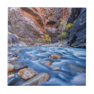 Les étroits de la rivière de Vierge en automne 3 Petit Carreau Carré