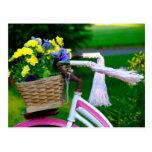 Les filles veulent juste avoir l'amusement, bicycl cartes postales