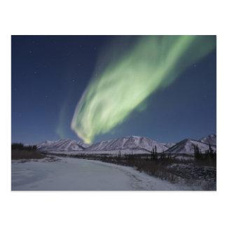 Les flammes des borealis de l'aurore remplissent cartes postales