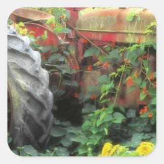 Les fleurs de ressort ornent un vieux tracteur autocollants carrés