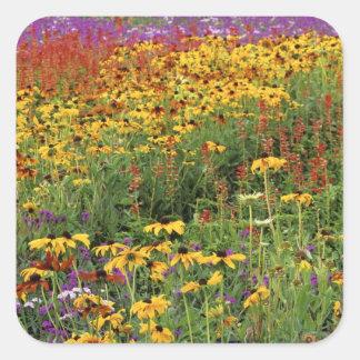 Les fleurs montrent aux jardins internationaux de sticker carré
