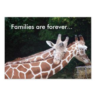 les girafes frottant des cous, familles sont pour faire-part