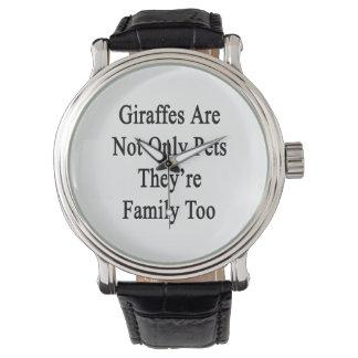 Les girafes sont non seulement des animaux montres cadran