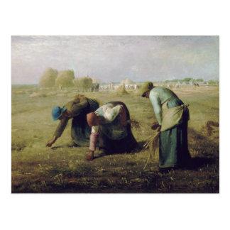 Les glaneurs par le millet de Jean-François Cartes Postales