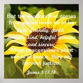 les graines de la bible de paix expriment le 3h17  affiche
