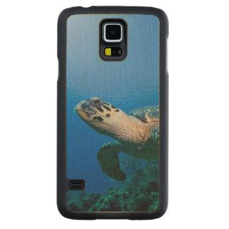 Les Îles Caïman, petite Île Caïman, 2 sous-marins Coque Slim Galaxy S5 En Érable