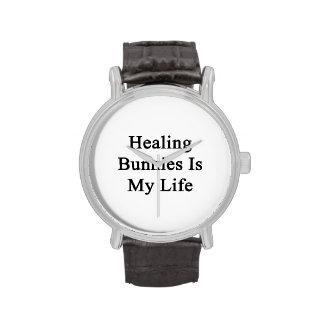Les lapins curatifs est ma vie montres cadran
