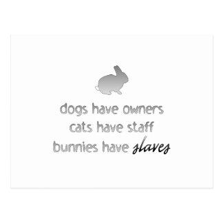 Les lapins ont des esclaves carte postale