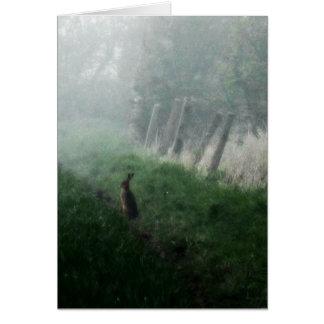 """""""Les lièvres que j'ai vus dans ma"""" carte vierge"""