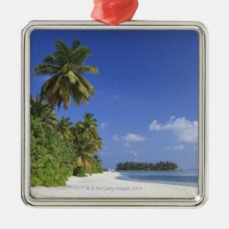 Les Maldives, atoll de Meemu, île de Medhufushi Ornement Carré Argenté