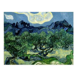 Les oliviers de Vincent van Gogh (1889) Cartes Postales