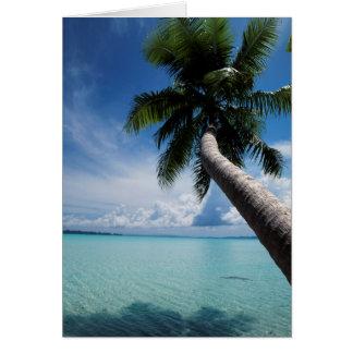 Les Palaos, Micronésie, palmier à la lagune des Carte De Vœux