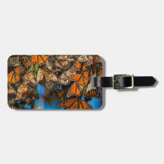 Les papillons de monarque de migration étiquettes bagages