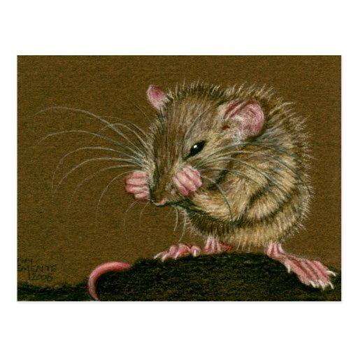Les pattes folles de rat lèvent la carte postale