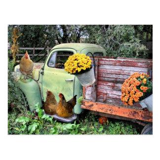 Les poulets et vieux prennent le camion carte postale