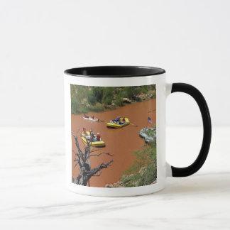 Les radeaux actionnés par aviron se transforment mug