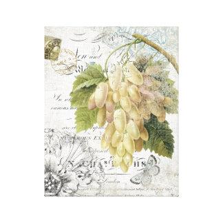 Les raisins botaniques français vintages ont étiré toiles