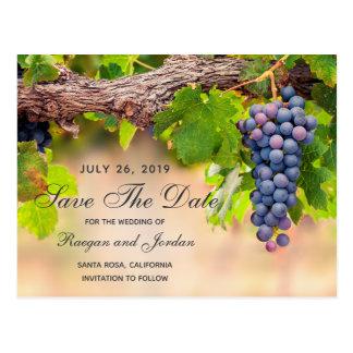 Les raisins sur des vignes sauvent la carte de